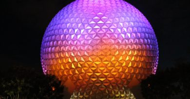 Epcot Center lit up in the night